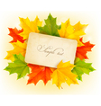 Autumn leaves with old paper vector image