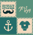 baby shower invitation cards vector image vector image