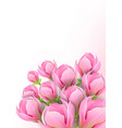 beautiful background with magnolia flowers vector image vector image