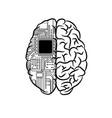 brain microscheme half background vector image