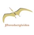 Dinosaur Pterodactyloidea vector image