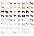 dog breeds set icons in cartoon style big vector image