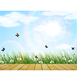 Fresh spring green grass with flower and butterfly vector image vector image