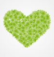 Heart from leaves Spring background vector image