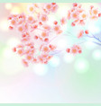 blossom branch of sakura flowers vibrant gradient vector image