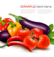 Fresh vegetable with leaves Healthy Eating vector image vector image