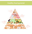 healthy food pyramid on a white background vector image