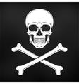 human evil skull jolly roger vector image vector image