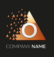 silver letter o logo symbol in the triangle shape vector image vector image