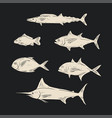 sketch of sea fish black and white color vector image vector image
