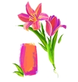 The cute Flower on white background vector image vector image