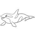 cartoon orca or killer whale animal character vector image