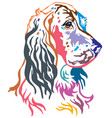 colorful decorative portrait of dog english vector image vector image