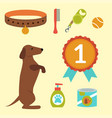 dachshund dog playing elements vector image vector image