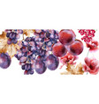 grapes watercolor card autumn fall background vector image vector image