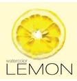 Hand drawn watercolor painting slice of lemon vector image