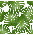 philodendron monstera leaf seamless isolated on vector image vector image