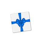 Present with blue bow for your holiday vector image vector image