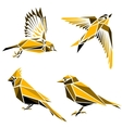 Set of four triangle birds symbols vector image vector image