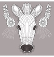 Sketch doodle hand drawn of zebra vector image