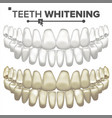 teeth whitening dental care cleaning vector image vector image