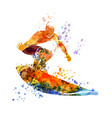 color surfer vector image