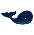 big blue whale print on white background vector image