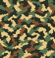 digital camouflage 2 vector image