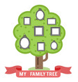 family tree photo picture frames flat design vector image