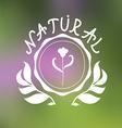 Floral emblem design vector image vector image