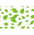 green leafs seamless background forest trees vector image vector image