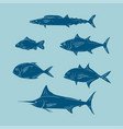 sketcg of sea fish blue color vector image vector image