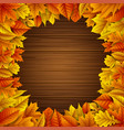 autumn leaves frame on wooden background vector image vector image