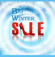 banner big winter sale poster vector image vector image