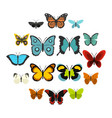 butterfly set flat icons vector image vector image