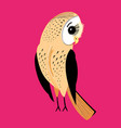 large graphic owl vector image vector image
