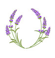 lavender garland vector image vector image