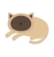 Lying sleeping siamese cat in flat design style vector image vector image
