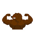 Aggressive strong Bear Bear athlete Angry animal vector image vector image