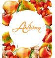 autumn background with apple pear and peach vector image vector image