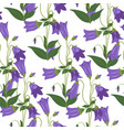 bluebell flowers in blossom blooming flora vector image vector image