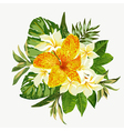 bouquet tropical flowers and leaves isolated vector image vector image
