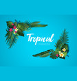 nature tropical card vector image vector image