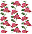 Roses floral pattern vector image vector image