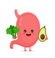 strong healthy happy stomach character vector image vector image