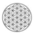 the flower of life vector image