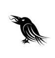 black raven bird vector image