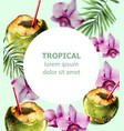 coconut cocktail tropic card colorful orchid vector image vector image