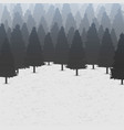 creative of wild coniferous vector image vector image