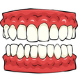 false teeth vector image